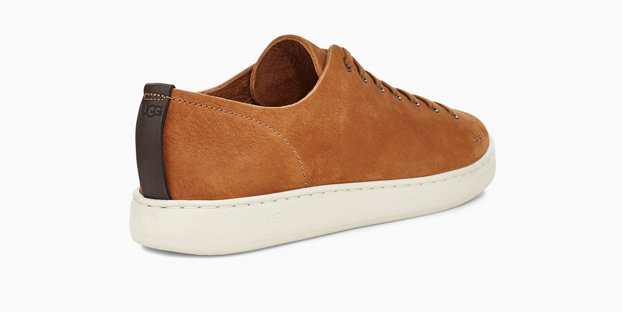 Pismo Sneaker Low - Image 4 of 6