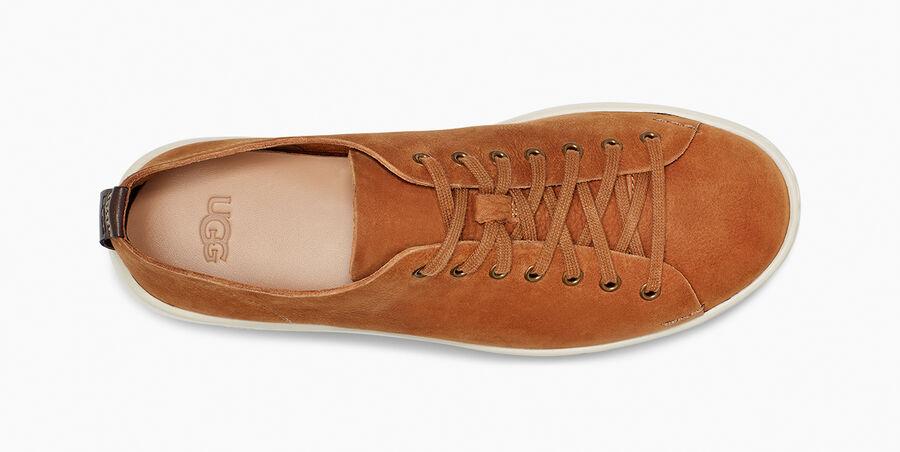 Pismo Sneaker Low - Image 5 of 6