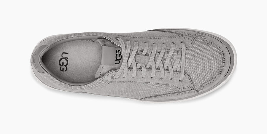 South Bay Sneaker Low Canvas - Image 5 of 6