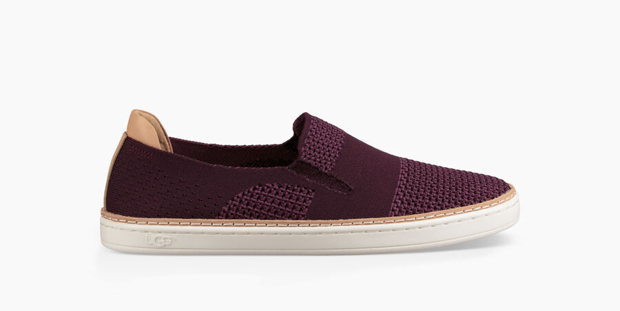 Women S Sammy Knit Sneakers Ugg 174 Official