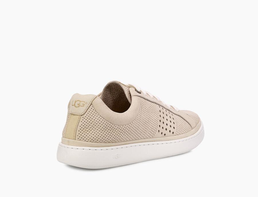 Cali Sneaker Low Perf - Image 4 of 6