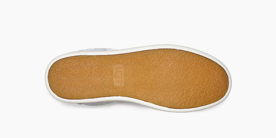 Milo Graphic Sneaker - Image 6 of 6