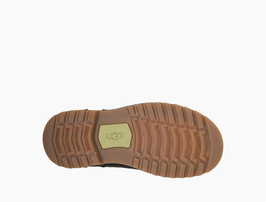 Callum Boot - Image 6 of 6