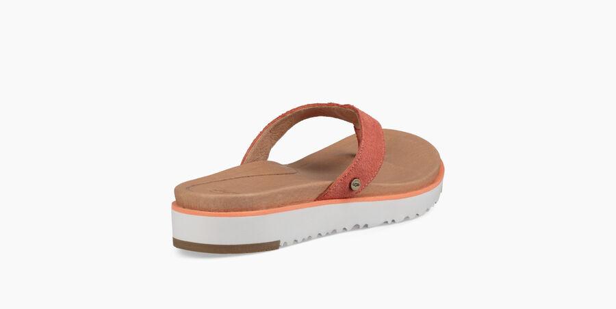 Lorrie Flip Flop - Image 4 of 6