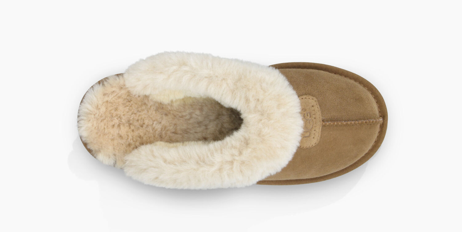 7f2a7c6b95a Women's Share this product Coquette Slipper