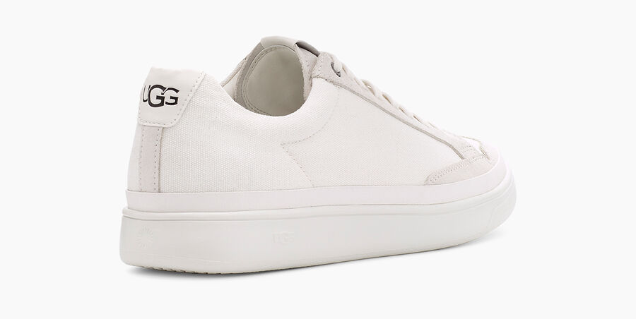 South Bay Sneaker Low Canvas - Image 4 of 6