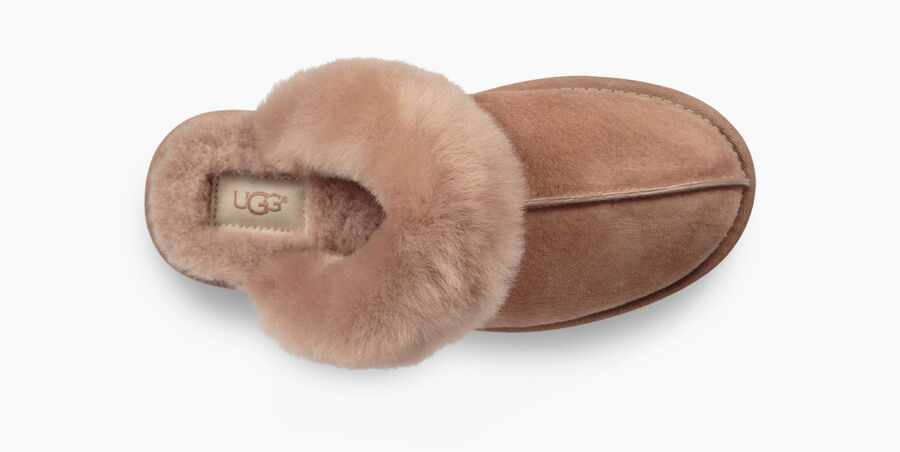 Scuffette II Slipper - Image 5 of 6