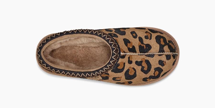Tasman Leopard - Image 5 of 6