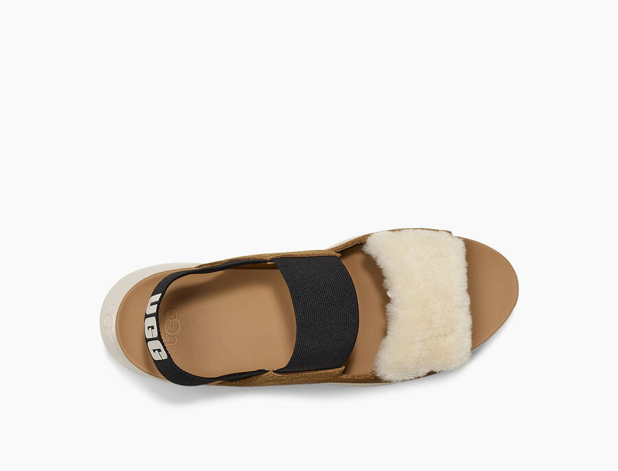 Silverlake Sneaker-Sandal - Image 5 of 6