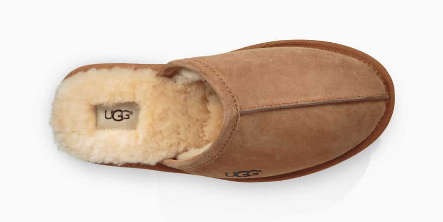 Scuff Suede - Image 5 of 6