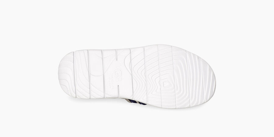 Cambrian Sneaker - Image 6 of 6