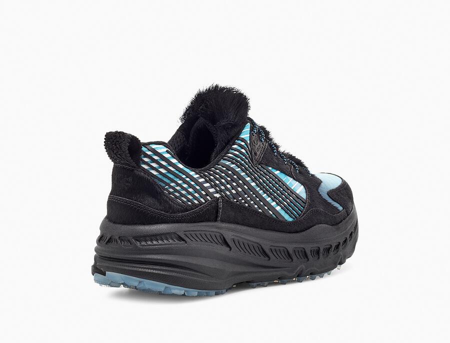 CA805 x Steller Jay Sneaker - Image 4 of 6