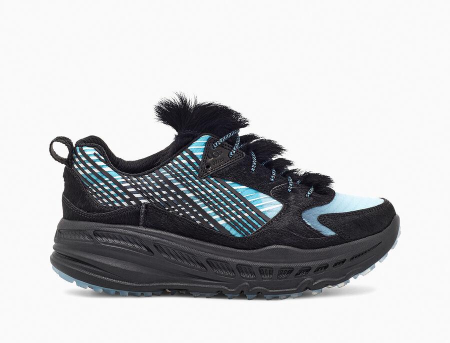 CA805 x Steller Jay Sneaker - Image 1 of 6