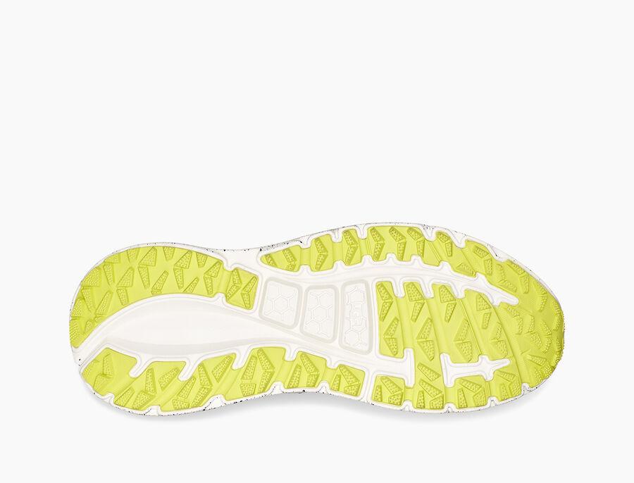 CA805 x Cedar Sneaker - Image 6 of 6