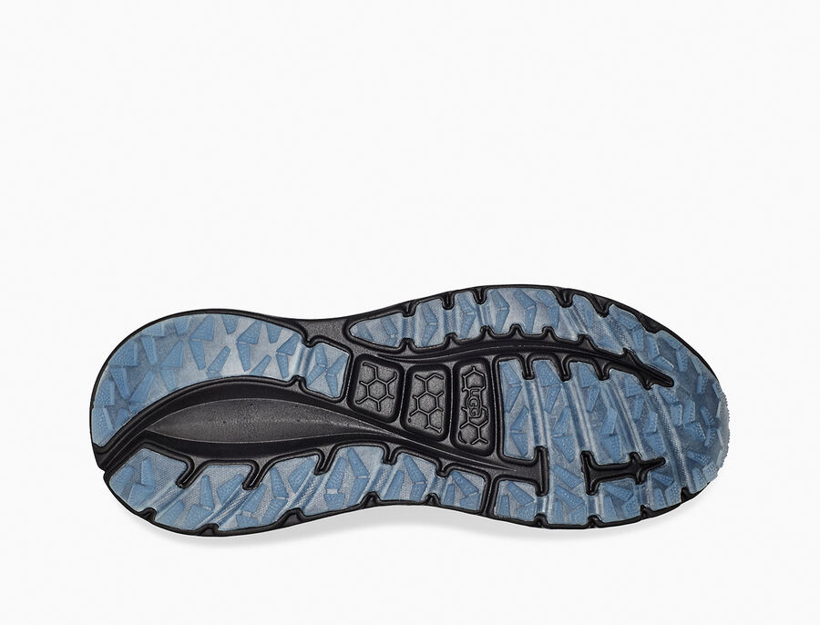 CA805 x Steller Jay Sneaker - Image 6 of 6