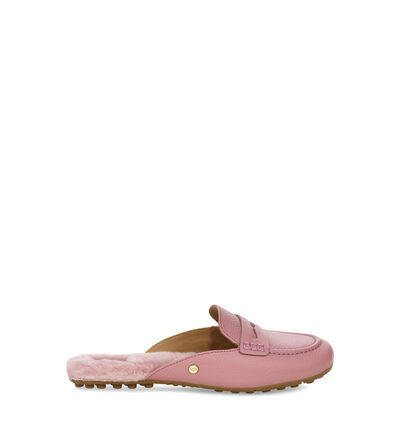 Shaine  Loafers