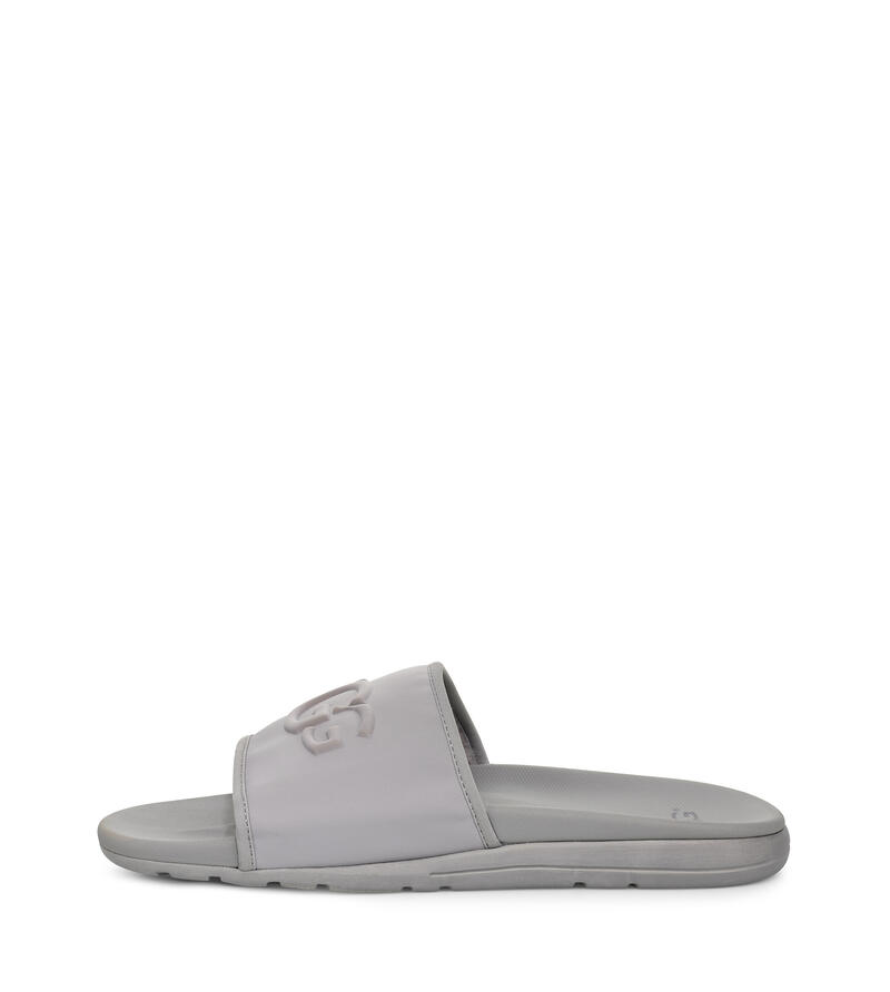 Xavier Graphic Sliders