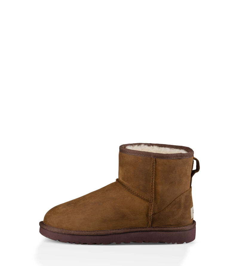 Classic Mini Leather Laarzen