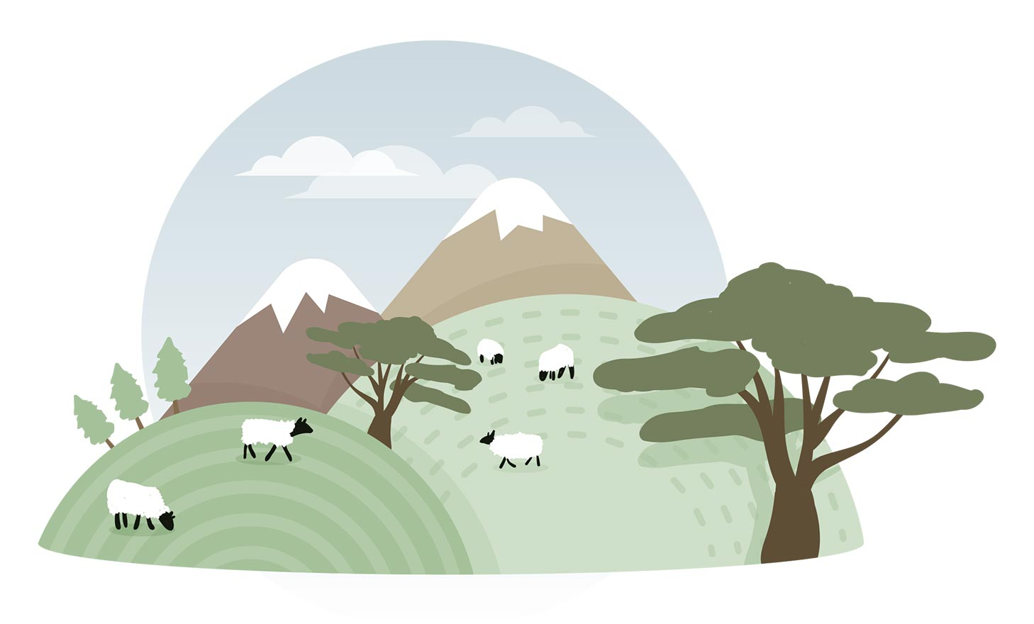 Sheep among hills and mountains grazing.