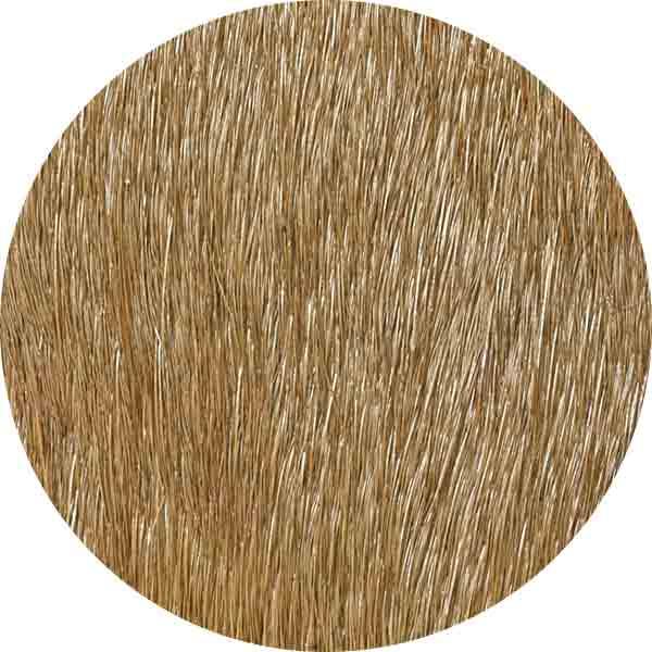 CALF HAIR 2
