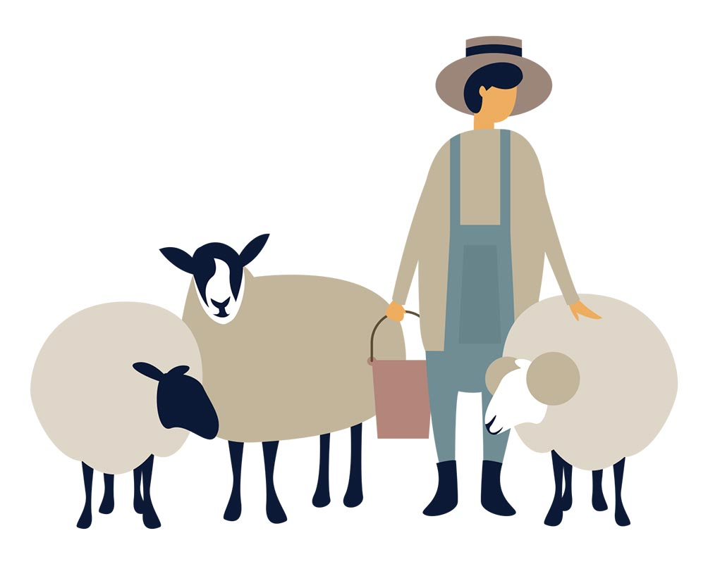 Farmer surrounded by sheep