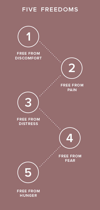 Five Freedoms infographic.