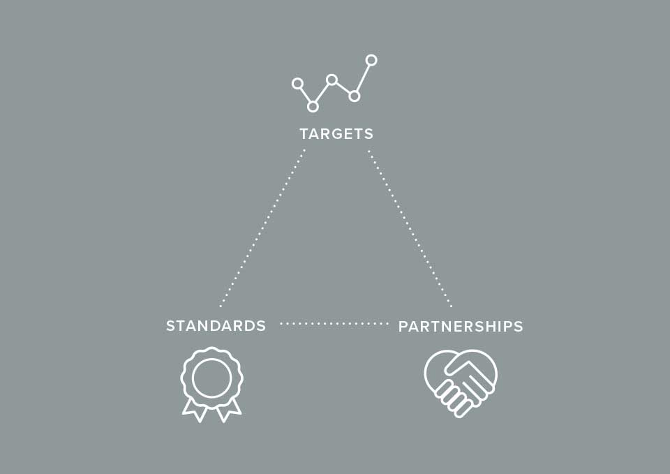 Target, standards, partnership triangle infographic on grey background.
